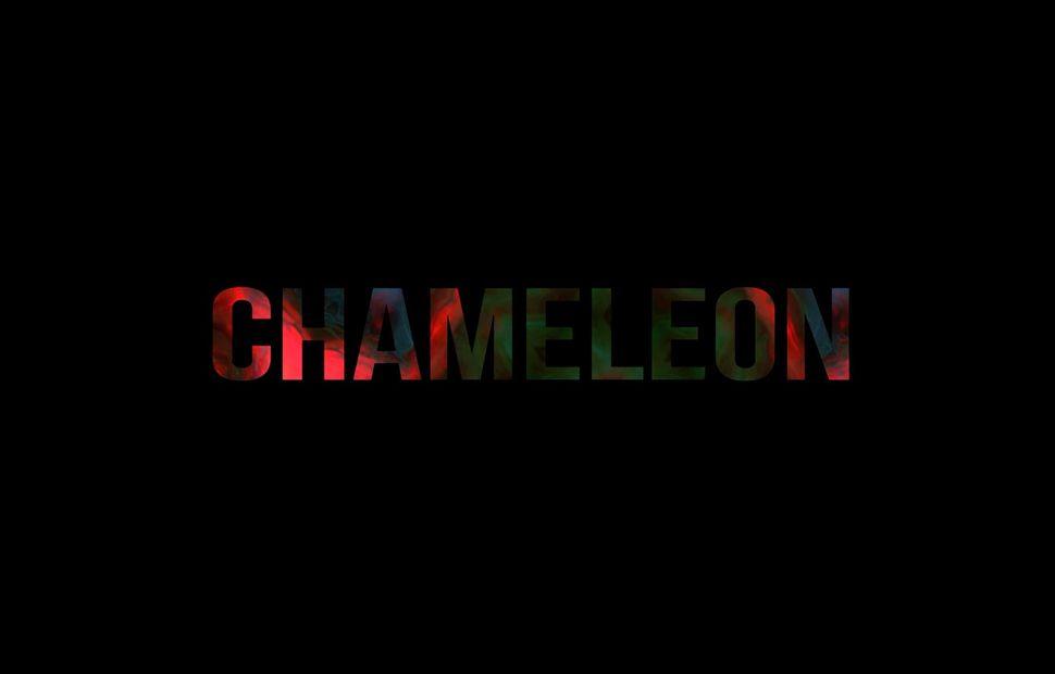 Chameleon, MA Filmmaking, UCA Farnham