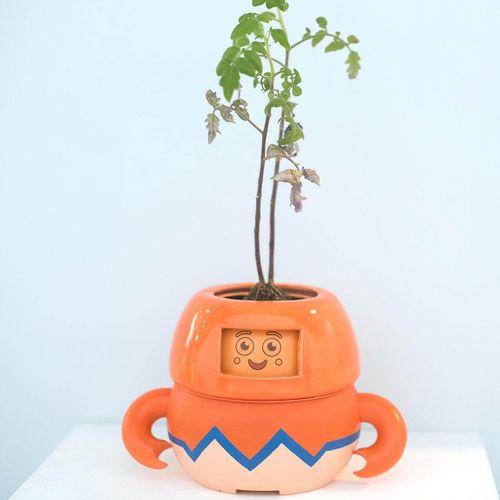 Mak Pok Leong, MA Product Design, UCA Farnham