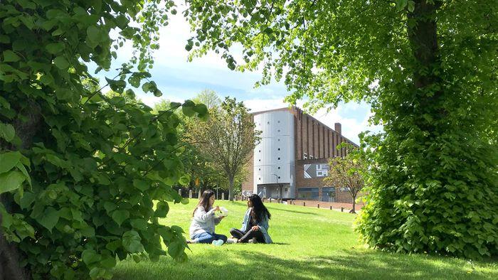 Campus photo - Rochester