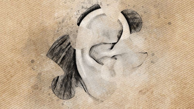 Animated still from Emily Larkin's final piece, showing an ear